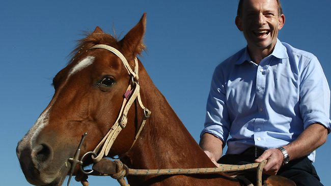 "Tony Abbott says ban on live export was ""an act of God"""