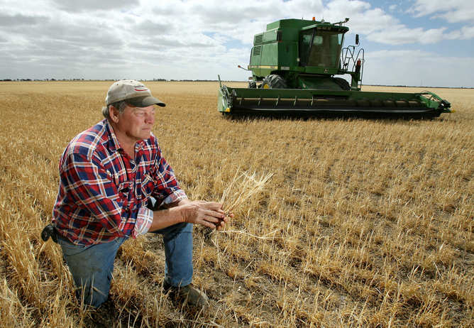 West Wyalong farmer, Angus McLane says the lack of rain this spring has really hurt him come harvest time.