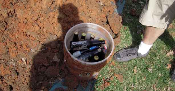 Beer bottles uncovered in the Brisbane City Botanical Gardens. PHOTO: University of Queensland