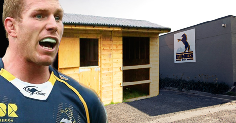 ARU to spend $20,000 building stable to house star players' high horses