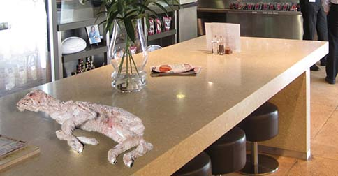 A dead lamb in Jones The Grocer's Woollahra supermarket. PHOTO: RSPCA