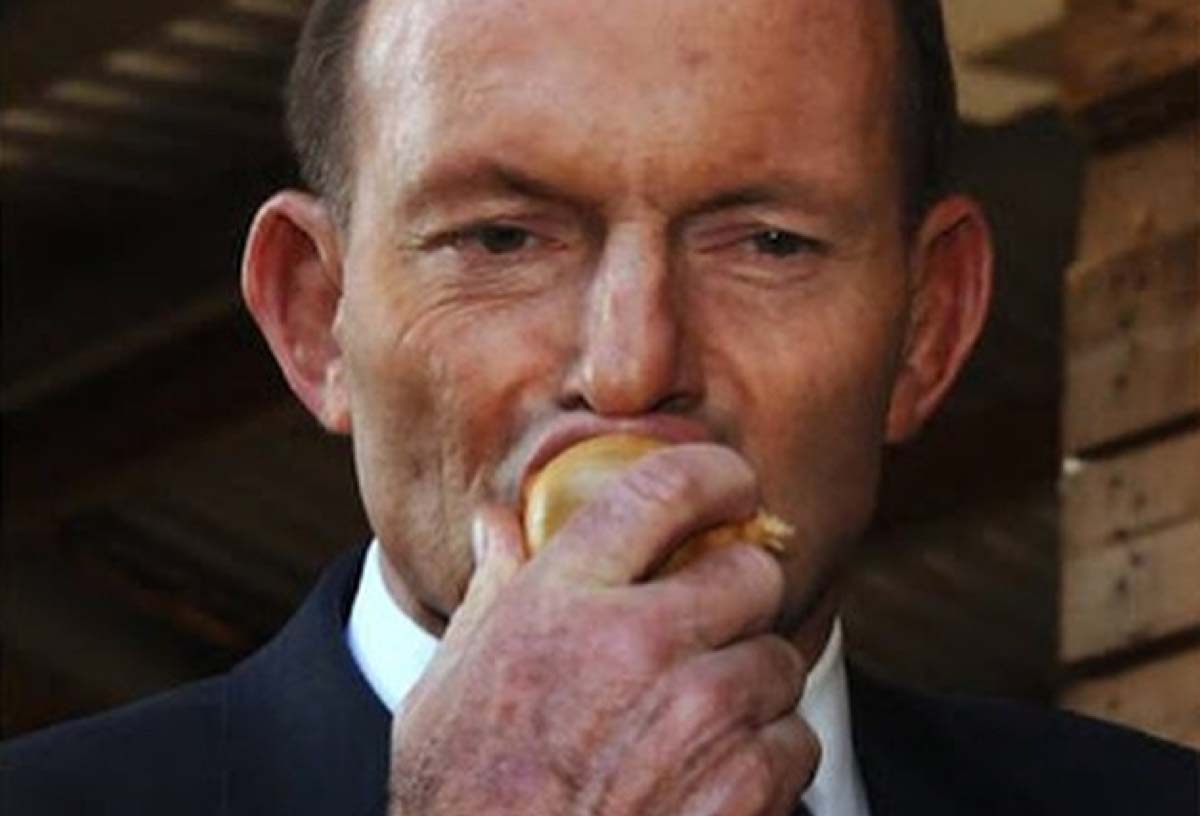 Tony Abbott mungs into a raw onion, a shocking act that has left many people questioning whether or not his history of boxing may have resulted in him suffering from early on-set dementia