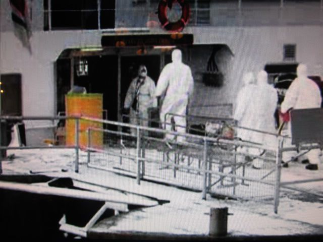 "Cleaning crews ender the Carnival Spirit this morning to deal with ""vomit"". PHOTO: 9NewsNow"