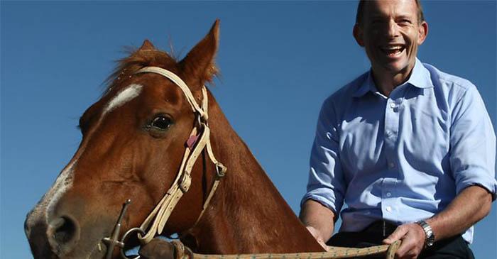 """Tony Abbott might """"head up north"""" on a Betoota gap year in 2016"""