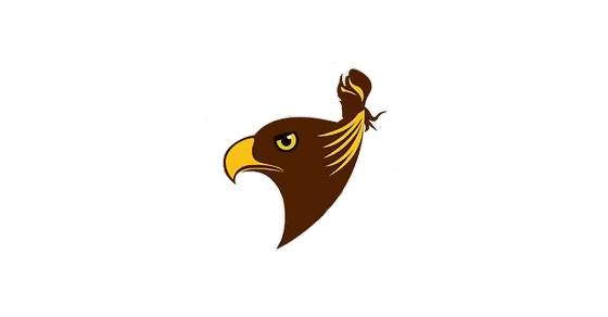 "The new ""unofficial"" logo for the Hawthorn Hawks shows a Hawk with a top-knot."