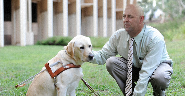 Darren Lehmann issues guide dogs to Australian batsmen so they can see the fucking ball better