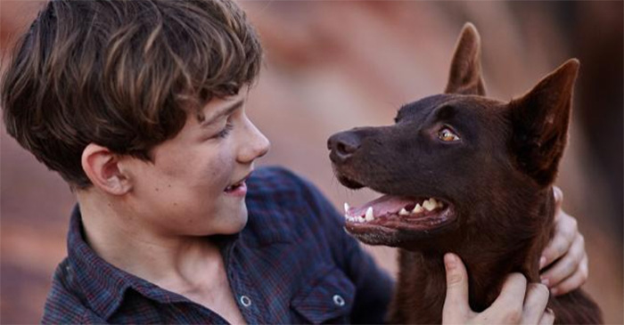 First non-depressing Australian film since 'Red Dog' announced