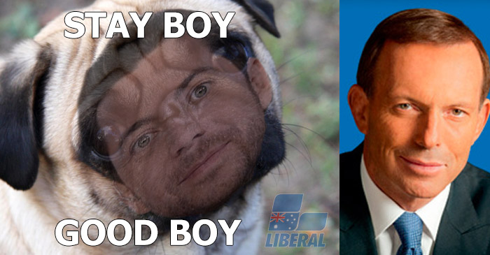 Tony Abbott compares rival James Mathison to a pug in vitriolic campaign memes