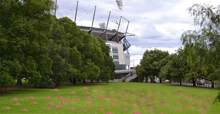 Melbourne's Yarra Park awash with thousands of Swans scarves as Bulldogs win AFL premiership
