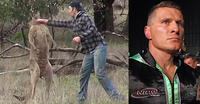Danny Green Calls Out 'Cocky' Kangaroo From Viral Video