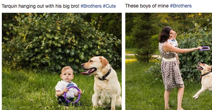 Facebook Mum Under The Impression That She Also Gave Birth To Family Labrador