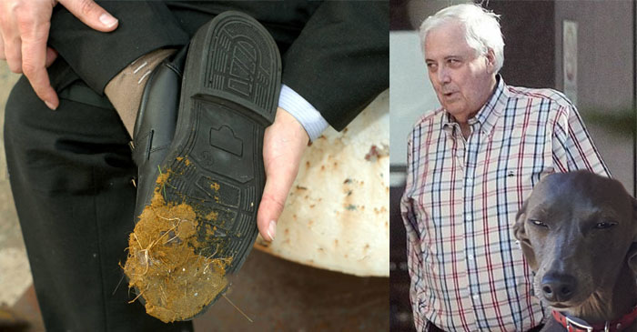 Clive Palmer A Bit Cranky With Grog Dog After Stepping On Grog Dog's Grog Bog