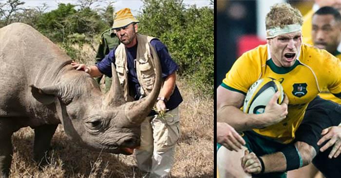Michael Cheika asks rhinos to grant David Pocock a sabbatical