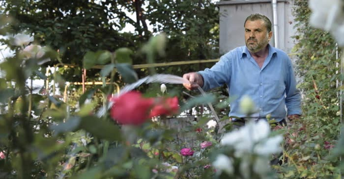 Ange Resigns To Focus On His Figs After Melbourne's Water Restrictions Are Repealed