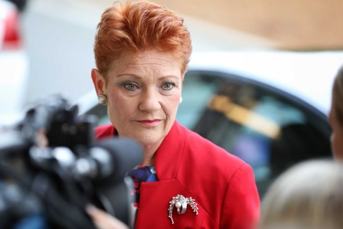 """""""Everyday Australians Are Sick Of Relatively Organised Political Parties"""" Says Hanson"""